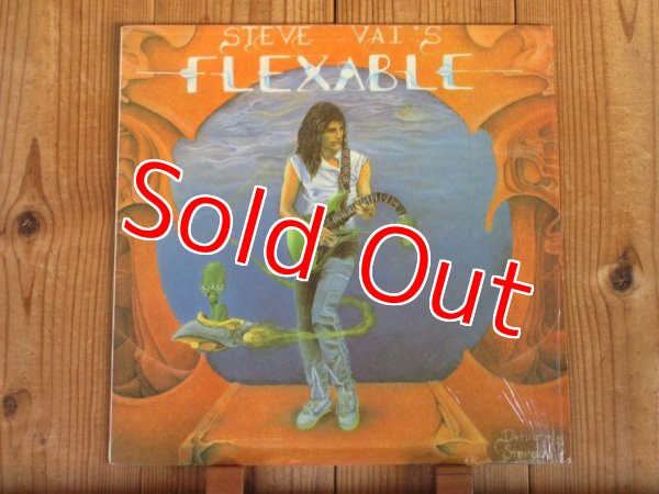 画像1: Steve Vai / Flex-Able (1)