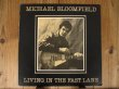 画像1: Michael Bloomfield / Living In The Fast Lane (1)